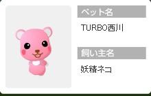 jifu2008_turbo.jpg